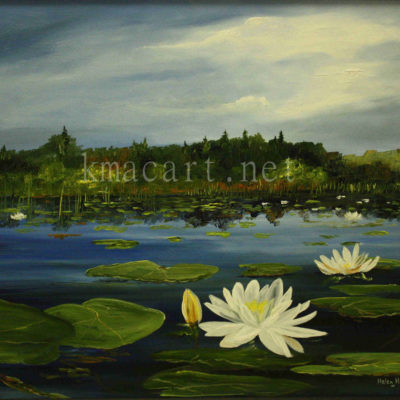 Water Lillies (16x20) inches
